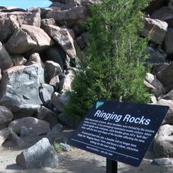 Ringing-Rocks